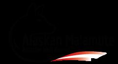 Alaskan Malamute - Austrian Wolf Kennel